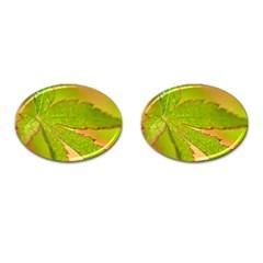 Leaf Cufflinks (Oval)