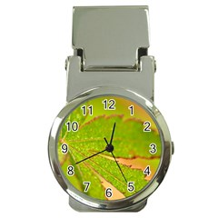 Leaf Money Clip With Watch