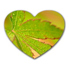Leaf Mouse Pad (Heart)