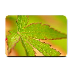 Leaf Small Door Mat