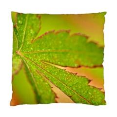 Leaf Cushion Case (two Sided)