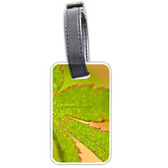 Leaf Luggage Tag (Two Sides)