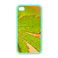 Leaf Apple iPhone 4 Case (Color)