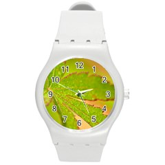 Leaf Plastic Sport Watch (Medium)