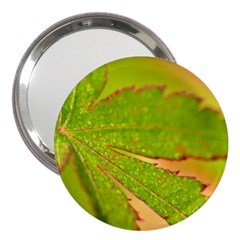 Leaf 3  Handbag Mirror