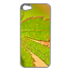 Leaf Apple iPhone 5 Case (Silver)