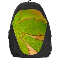 Leaf Backpack Bag