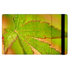 Leaf Apple iPad 3/4 Flip Case