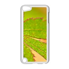Leaf Apple iPod Touch 5 Case (White)