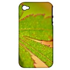 Leaf Apple Iphone 4/4s Hardshell Case (pc+silicone)