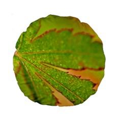 Leaf 15  Premium Round Cushion