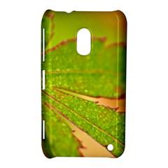 Leaf Nokia Lumia 620 Hardshell Case