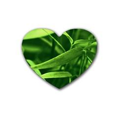 Bamboo Drink Coasters (Heart)