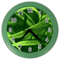 Bamboo Wall Clock (Color)