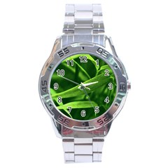 Bamboo Stainless Steel Watch (men s)