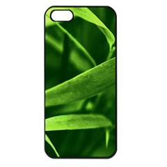 Bamboo Apple iPhone 5 Seamless Case (Black)