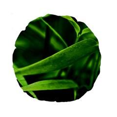 Bamboo 15  Premium Round Cushion