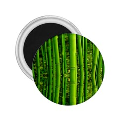 Bamboo 2.25  Button Magnet