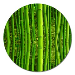 Bamboo Magnet 5  (Round)