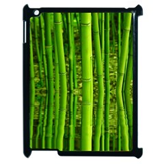 Bamboo Apple Ipad 2 Case (black)