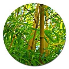 Bamboo Magnet 5  (Round)