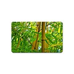 Bamboo Magnet (Name Card)