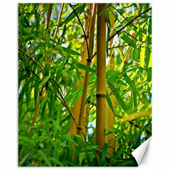 Bamboo Canvas 16  X 20  (unframed)
