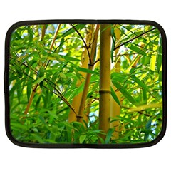 Bamboo Netbook Case (Large)