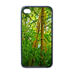 Bamboo Apple iPhone 4 Case (Black)