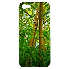 Bamboo Apple iPhone 5 Hardshell Case
