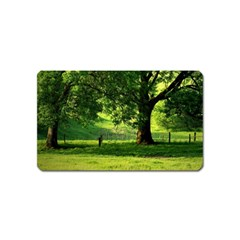 Trees Magnet (Name Card)