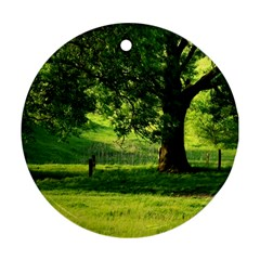 Trees Round Ornament (Two Sides)