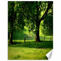 Trees Canvas 12  X 16  (unframed)