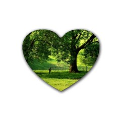 Trees Drink Coasters 4 Pack (Heart)