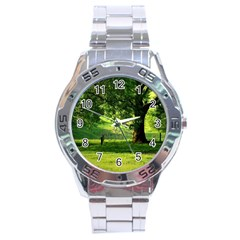 Trees Stainless Steel Watch (men s)