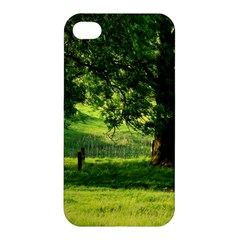 Trees Apple iPhone 4/4S Hardshell Case