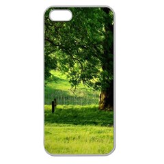 Trees Apple Seamless Iphone 5 Case (clear)