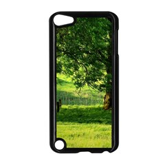 Trees Apple Ipod Touch 5 Case (black)