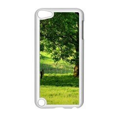 Trees Apple iPod Touch 5 Case (White)