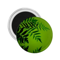 Leaf 2 25  Button Magnet
