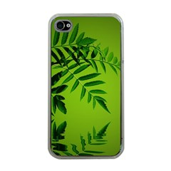 Leaf Apple iPhone 4 Case (Clear)