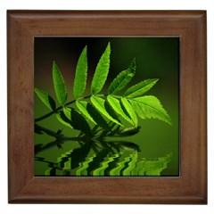Leaf Framed Ceramic Tile