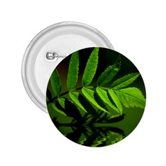 Leaf 2 25  Button