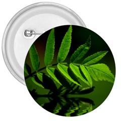 Leaf 3  Button