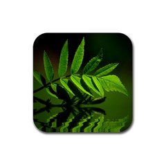 Leaf Drink Coasters 4 Pack (Square)