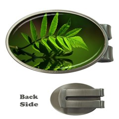 Leaf Money Clip (Oval)