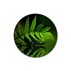 Leaf Drink Coaster (Round)