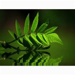 Leaf Canvas 18  X 24  (unframed)