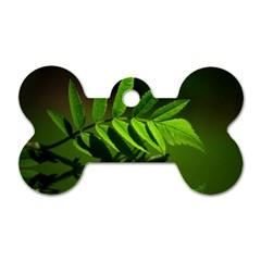 Leaf Dog Tag Bone (Two Sided)