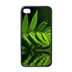 Leaf Apple Iphone 4 Case (black)